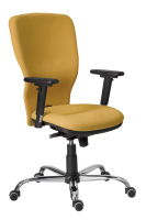 Kancelářská židle Studio Plus SN100232