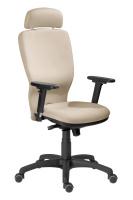 Kancelářská židle Studio Plus SN100233