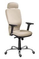 Kancelářská židle Studio Plus SN100234