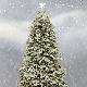 Vánoční dovolená od 27. do 29.12.